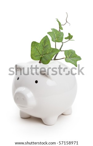Piggy bank and plant with white background