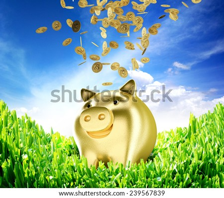 piggy bank concept, of saving money with environmentally - stock photo