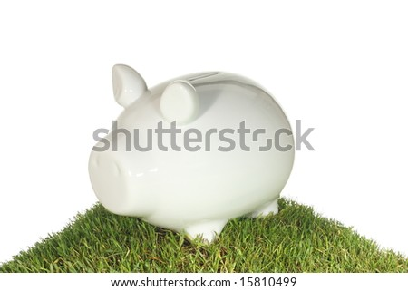 Piggy bank on a grass mound with a white background. - stock photo