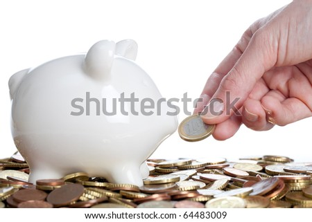 Piggy Bank on a white background - stock photo