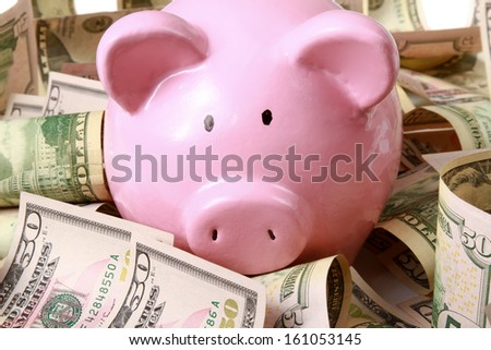 piggy bank on dollars - stock photo