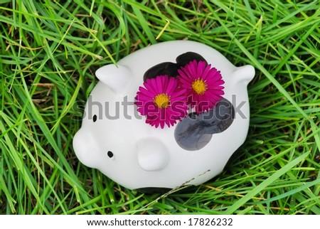 Piggy bank on grass - stock photo