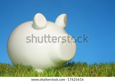 Piggy bank on grass with a blue background. - stock photo