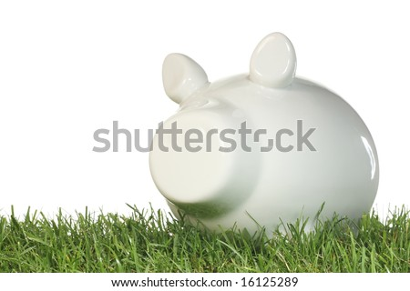 Piggy bank on grass with a white background. - stock photo