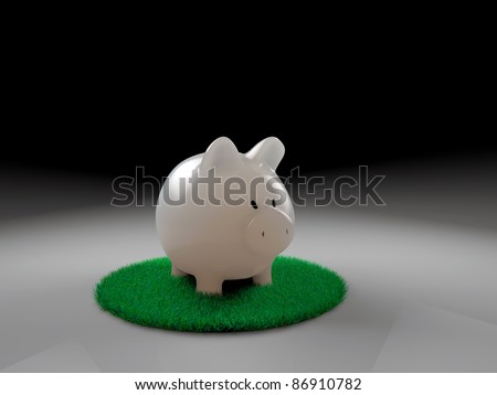 piggy bank on green grass