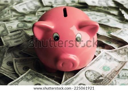 Piggy bank on money background - stock photo