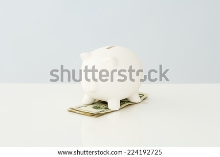 Piggy bank on top of a small pile of twenty dollar bills - stock photo