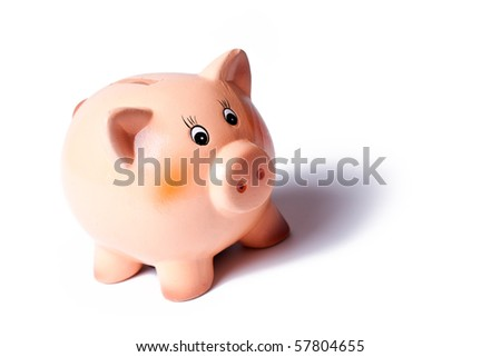 piggy bank on white background - stock photo