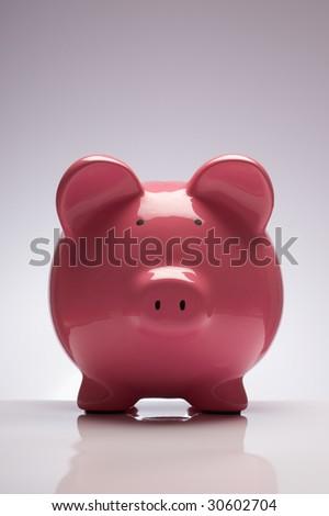 Piggy bank pink pig money box - stock photo