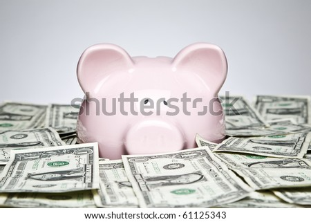 Piggy bank placed up to its nose in a pile of dollars - stock photo