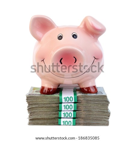 Piggy bank standing on a stack of banknotes - stock photo