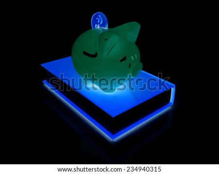 Piggy Bank with a gold dollar coin on book on a black background - stock photo