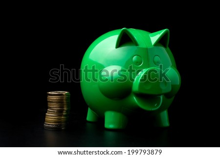 Piggy Bank with money - stock photo