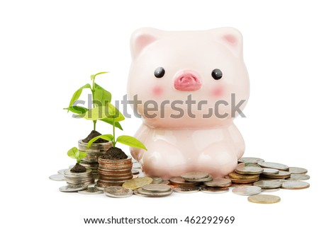 Piggy Bank with money and baby tree