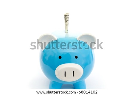 piggy bank with paper money - stock photo