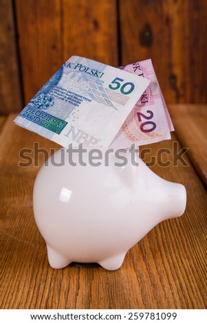 piggy bank with polish banknotes - stock photo