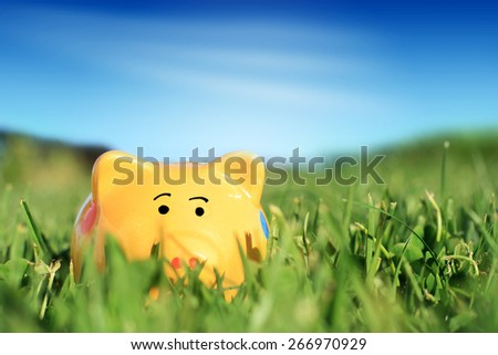 Piggybank in grass over blue sky background.