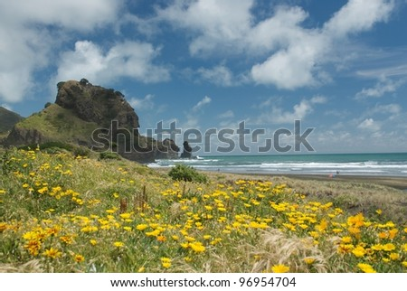 Piha beach in New Zealand during summer - stock photo