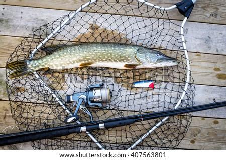 Pike fishing trophy on the bridge - stock photo