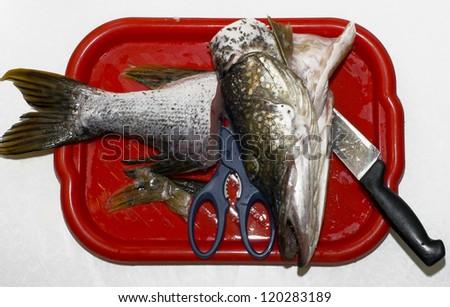 Pike on a cutting board - stock photo
