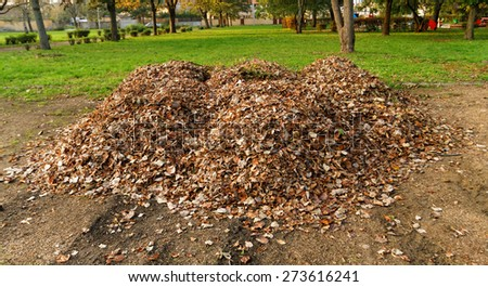 Pile fallen autumn leaves in the park - stock photo