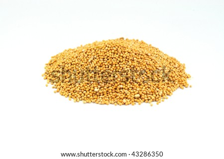 Pile Mustard Seeds used as seasoning isolated over white background. - stock photo