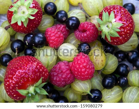 Pile of assorted fruits - stock photo