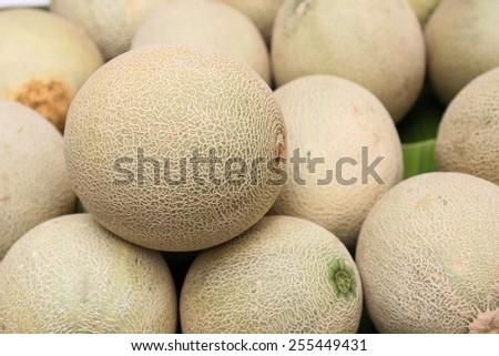 pile of cantaloupe fruit for sale - stock photo