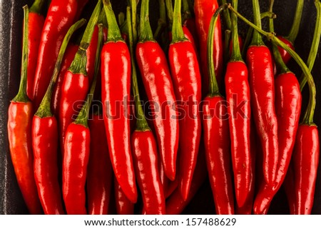 Pile of chilli - stock photo