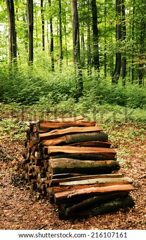 Pile of chopped firewood logs - stock photo