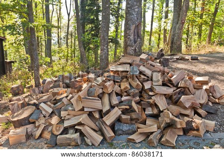 Pile of chopped wood in the forest - stock photo
