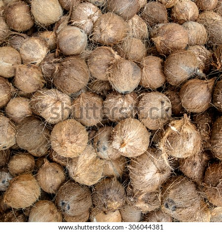Pile of coconuts  - stock photo