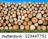 pile of cut wood stacked at lumber yard in sunlight with blue sky and green grass - stock photo