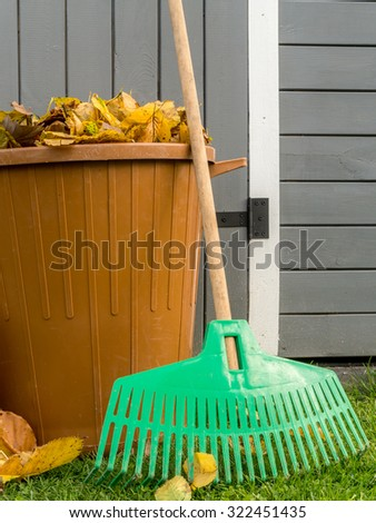 Pile of dead fall leaves swept and dumped into plastic bin with fan rake resting against wooden shed - stock photo