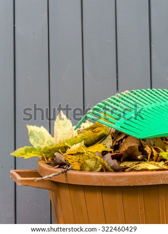 Pile of dead fall leaves swept and dumped into plastic bin with fan rake resting on it - stock photo