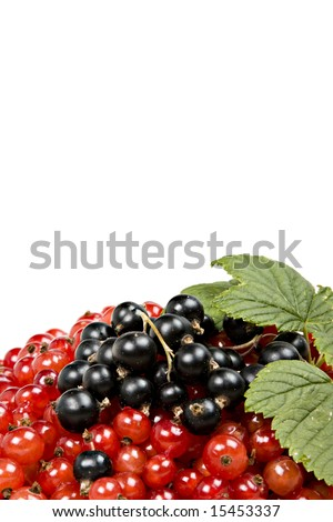 pile of delicious berries isolated - stock photo