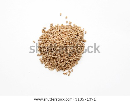 pile of dried Sesame Seed isolated on a white background. - stock photo