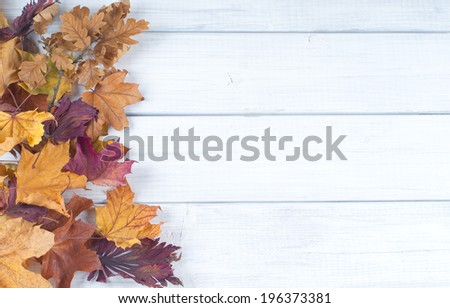Pile of Fall Leaves on side of Rustic White Painted Board background with room or space for copy, text.    Horizontal vintage cross process - stock photo