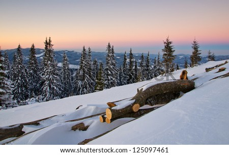 pile of firewood in the snow at sunset - stock photo