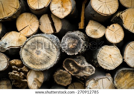 Pile of firewood logs - stock photo