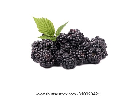 Pile of fresh and ripe blackberries with leaves isolated on a white background - stock photo