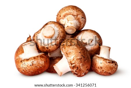 Pile of fresh brown champignon isolated on white background - stock photo