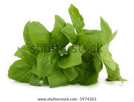 pile of fresh green basil on white background, minimal shadow underneath