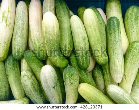 Pile of fresh green cucumbers in market