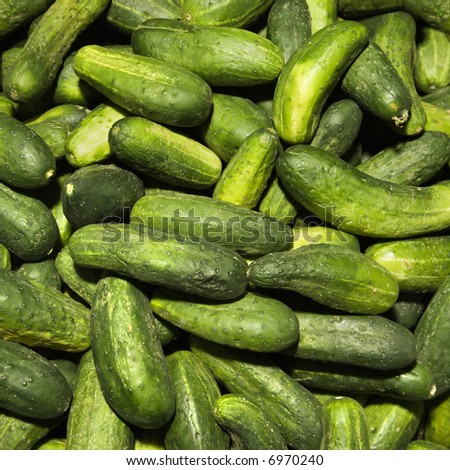Pile of green cucumbers at produce market.