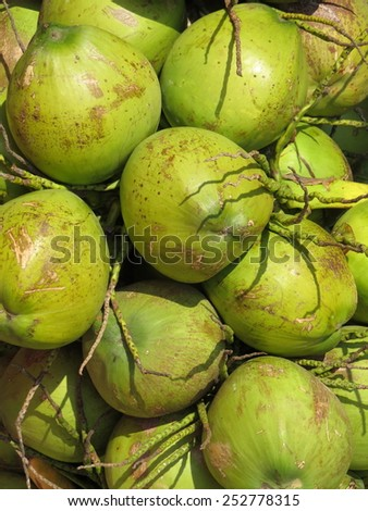 Pile of green whole coconuts at the market in Chiang Mai, Thailand - stock photo
