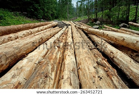 Pile of logs in High Tatra mountain, Poland - stock photo