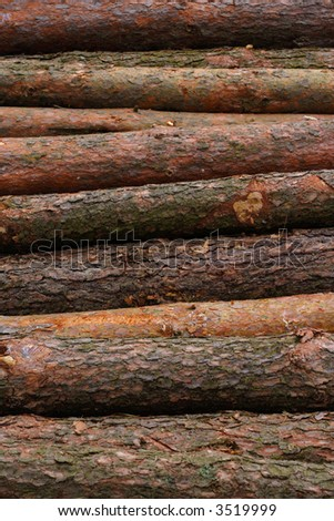 Pile of logs stacked for transportation. - stock photo
