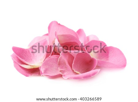 Pile of multiple pink rose petals isolated over the white background