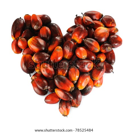 Pile of Palm Oil seeds in heart shape isolated on a white background. - stock photo